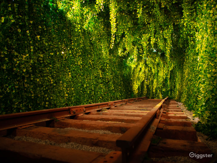 Downtown Green Vine Railroad Tunnel Photo 3