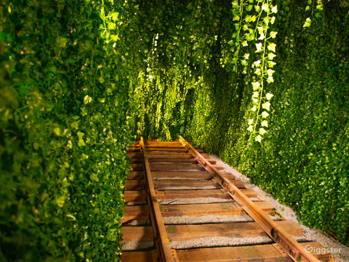Downtown Green Vine Railroad Tunnel Photo 5