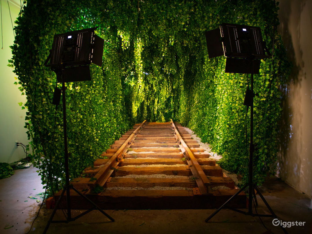 Downtown Green Vine Railroad Tunnel Photo 1