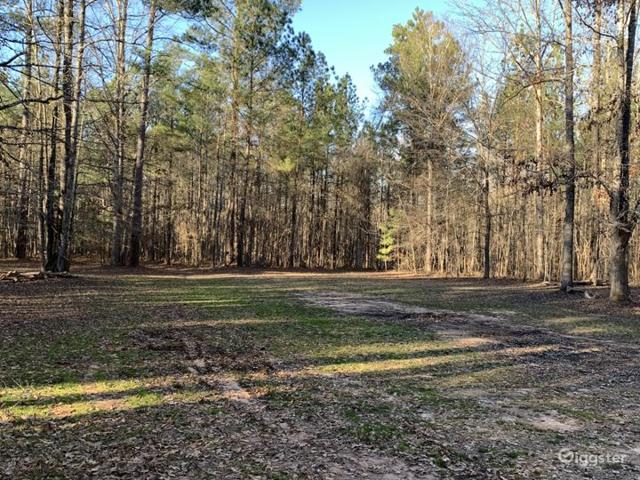 Wooded trail outside of shed