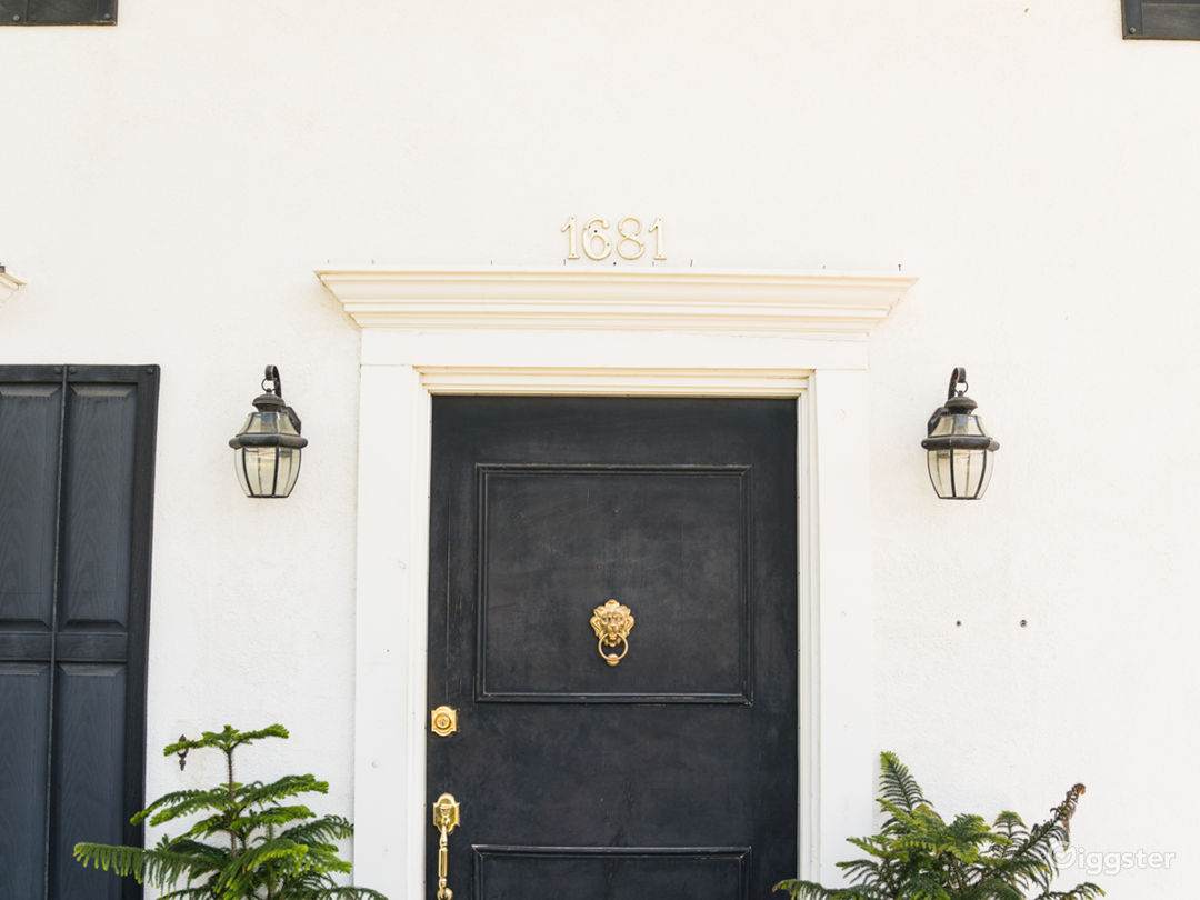 Entrance with Venetian Lion knocker knobs