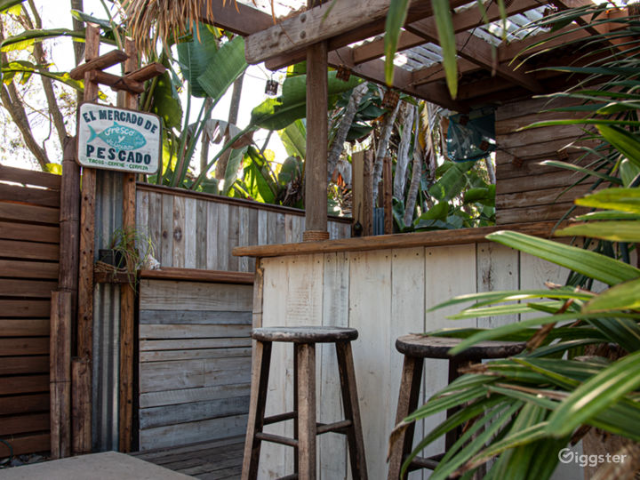 Lush Tropical Themed Outdoor Space Photo 3