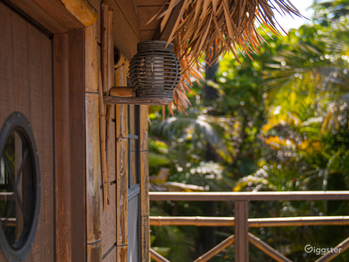 Lush Tropical Themed Outdoor Space Photo 5