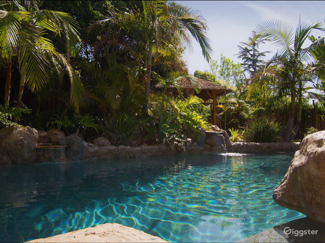 Lush Tropical Themed Outdoor Space Photo 1