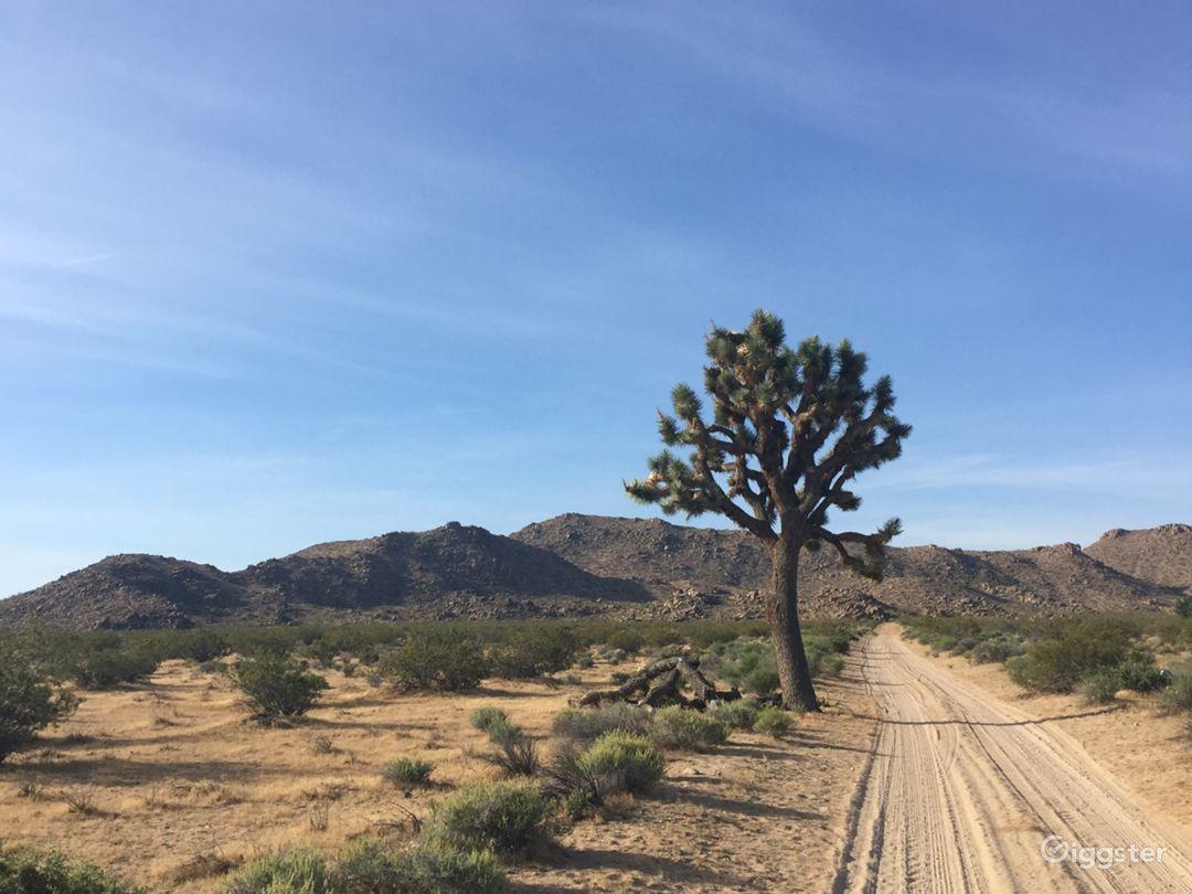 The Roadrunner Ranch 40 Acre Desert Mountain Rent This