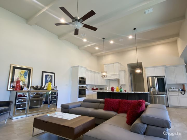Modern new bright open space inviting house  Photo 4