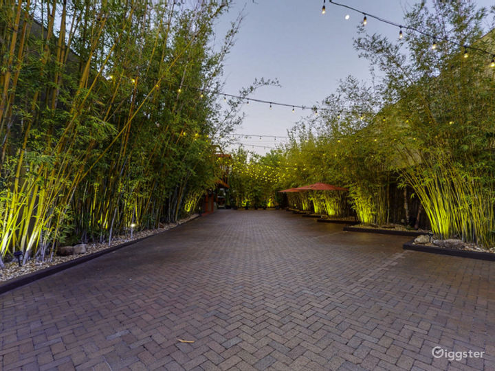 Bamboo Courtyard, looking east, NOVA 535, Downtown St. Pete, Florida.