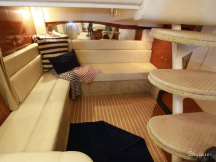 Fascinating 38ft Sea Ray Armando Party Boat Space Events Photo 4