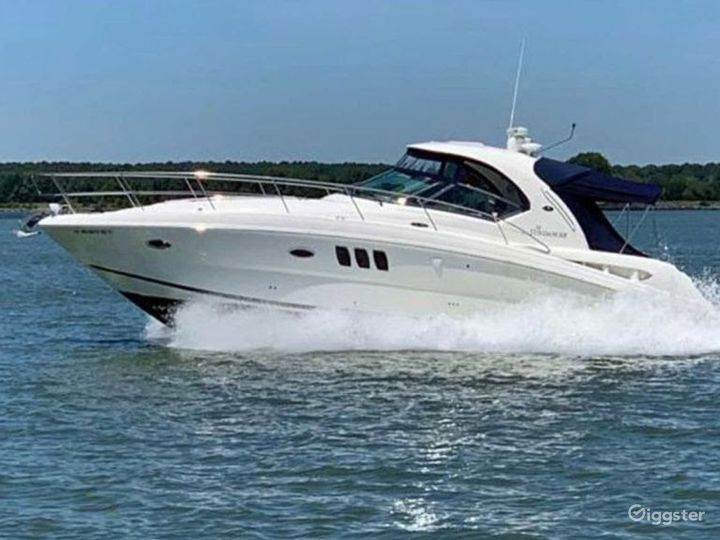 Fascinating 38ft Sea Ray Armando Party Boat Space Events Photo 5