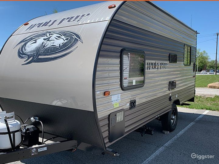 Simple and Lightweight 17sq ft 2016 Wolf Pup Recreational Vehicle Photo 5