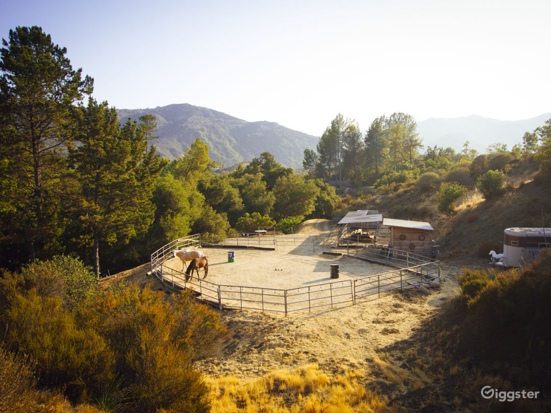 Horse corrals and arena