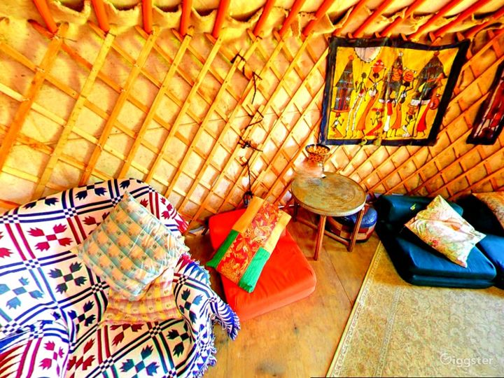 Orchard Yurt in East Grinstead Photo 3