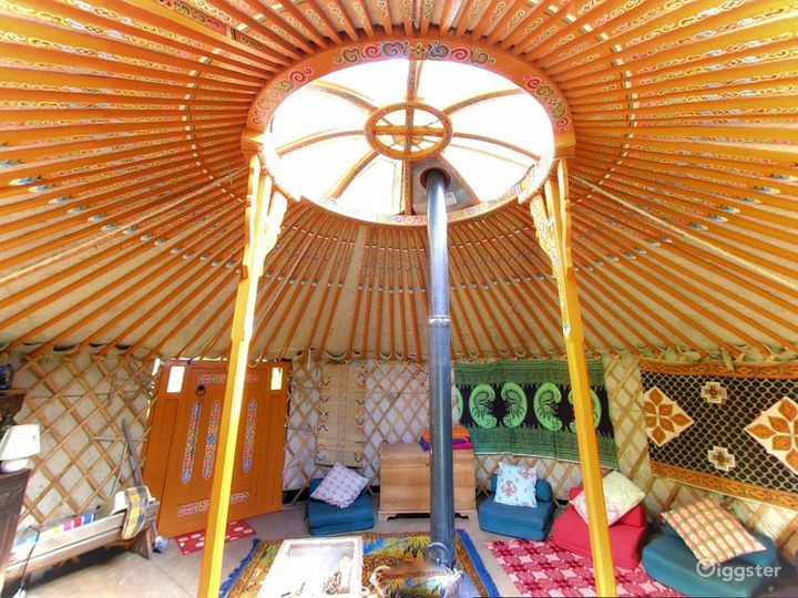 Orchard Yurt in East Grinstead Photo 2