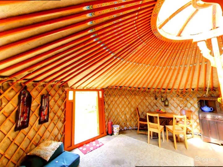 Orchard Yurt in East Grinstead Photo 4