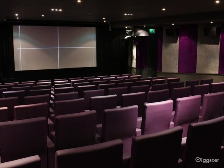 Private Cinema with Suede walls & Luxurious mauve leather seating in London Photo 4