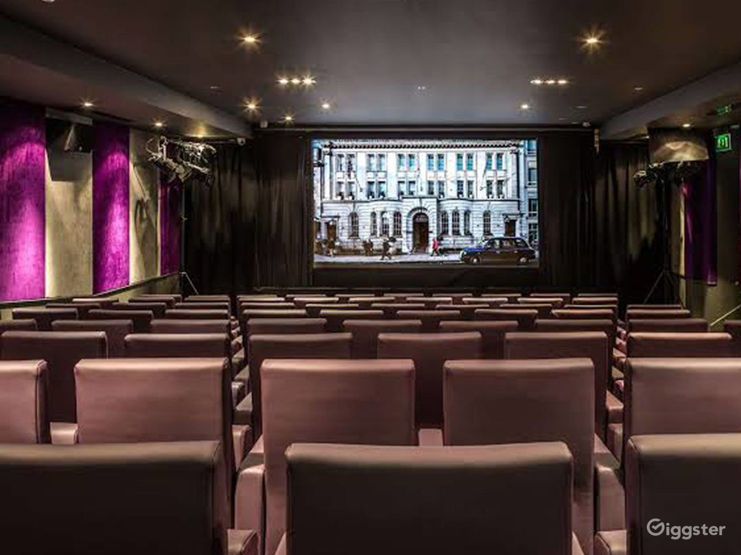 Private Cinema with Suede walls & Luxurious mauve leather seating in London Photo 1