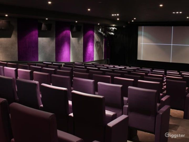 Private Cinema with Suede walls & Luxurious mauve leather seating in London Photo 5