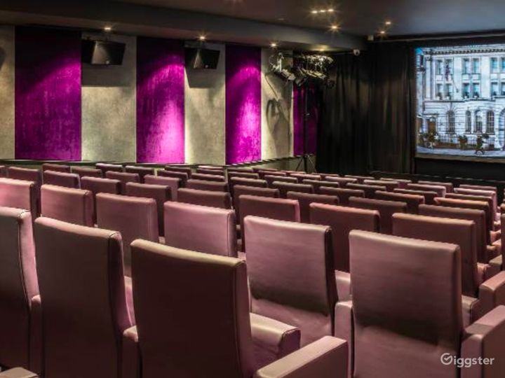 Private Cinema with Suede walls & Luxurious mauve leather seating in London Photo 2