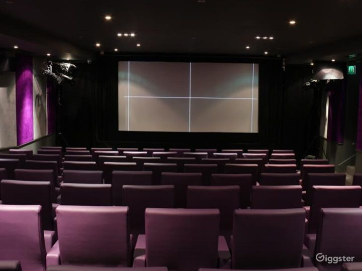 Private Cinema with Suede walls & Luxurious mauve leather seating in London Photo 3