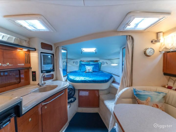 Wide and Winning 34FT  Sea Ray Sea Isle #2 Party Boat Space Events Photo 3