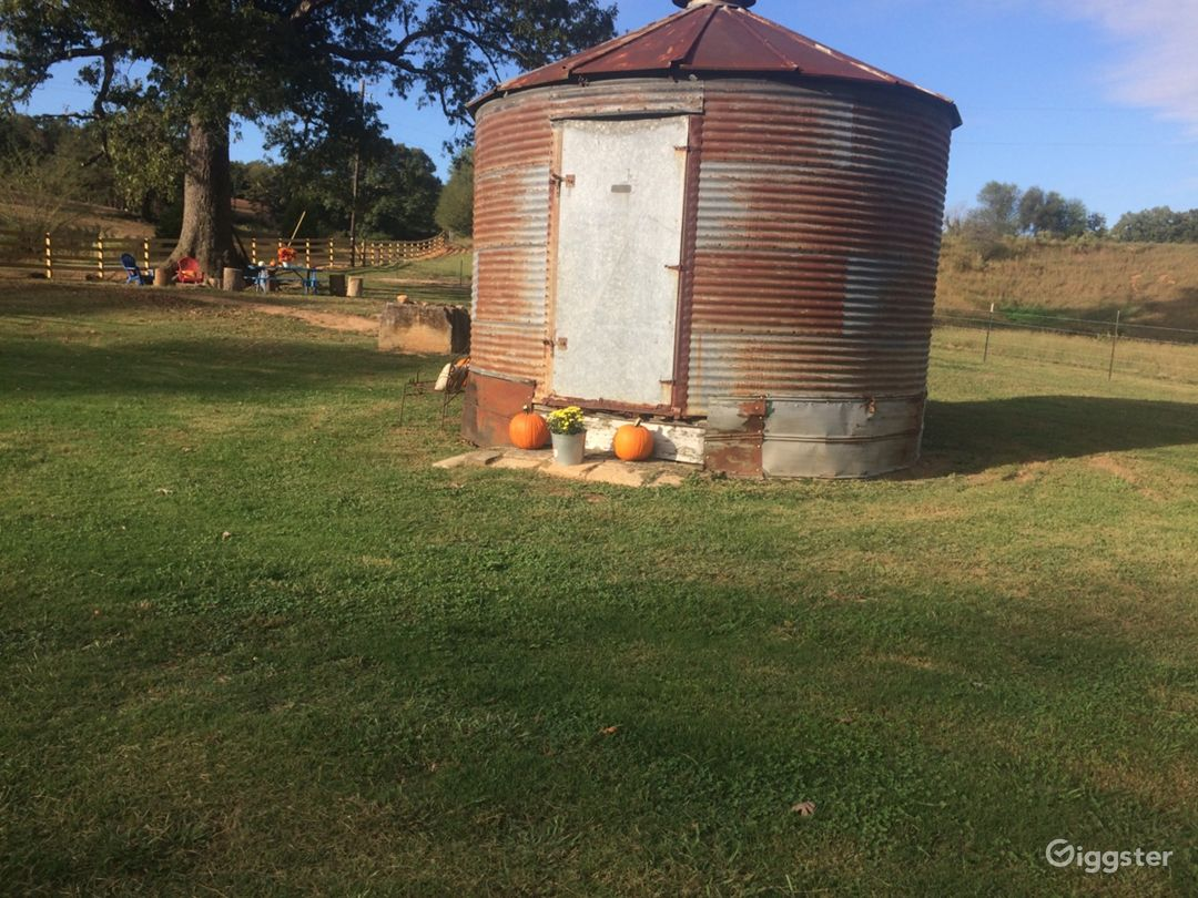 The farm is always festively decorated with each passing season. Pictured here are locally grown pumpkins placed alongside our vintage farm silo.
