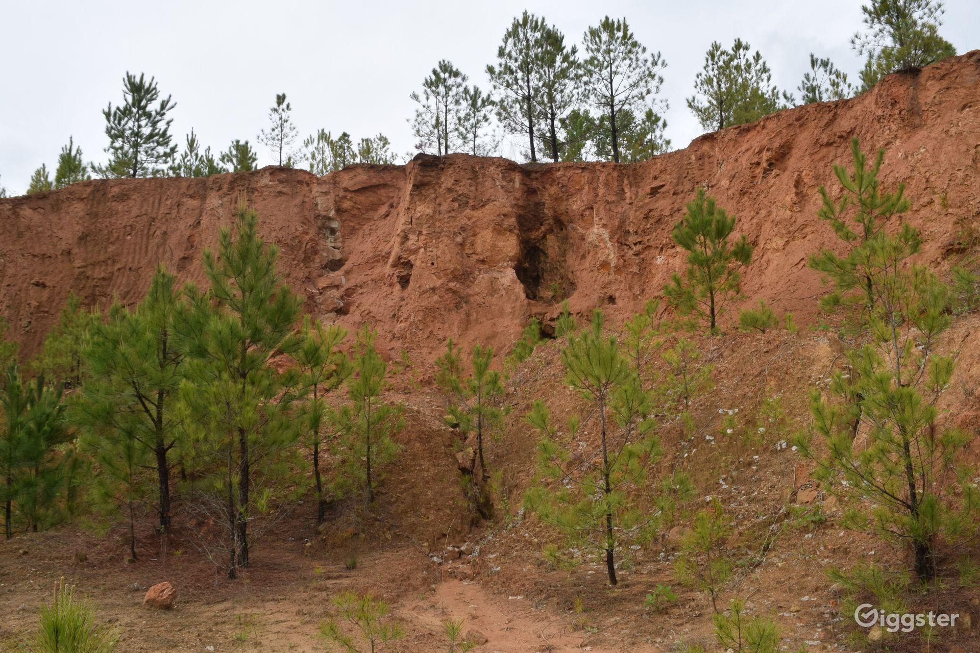 92 Acres of Beautiful Forestry near Lake Charlotte Nature Preserve Atlanta
