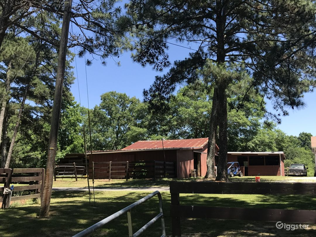 Spacious 7-acre Updated Ranch  Photo 4