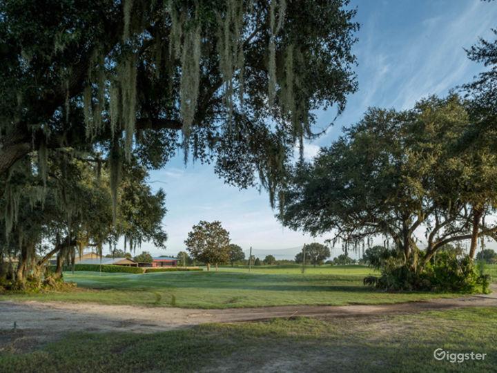 Beautiful Live Oaks on the back 9 holes