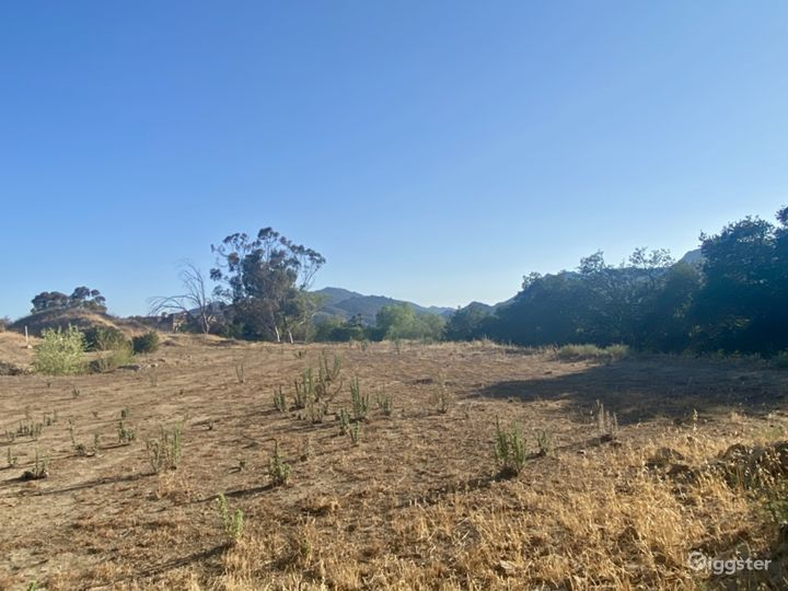 2.4 Acre Land on Iverson Rd in Indian Springs  Photo 5