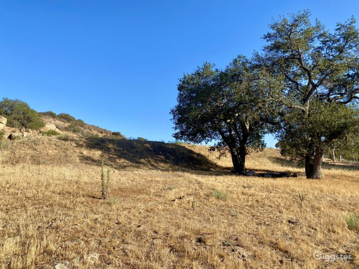 2.4 Acre Land on Iverson Rd in Indian Springs  Photo 4