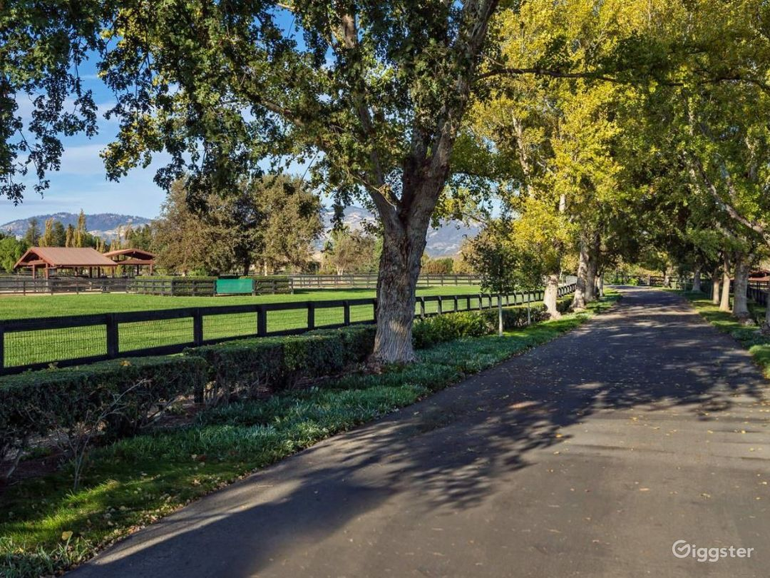 Equestrian Ranch and Beautiful Land Photo 2