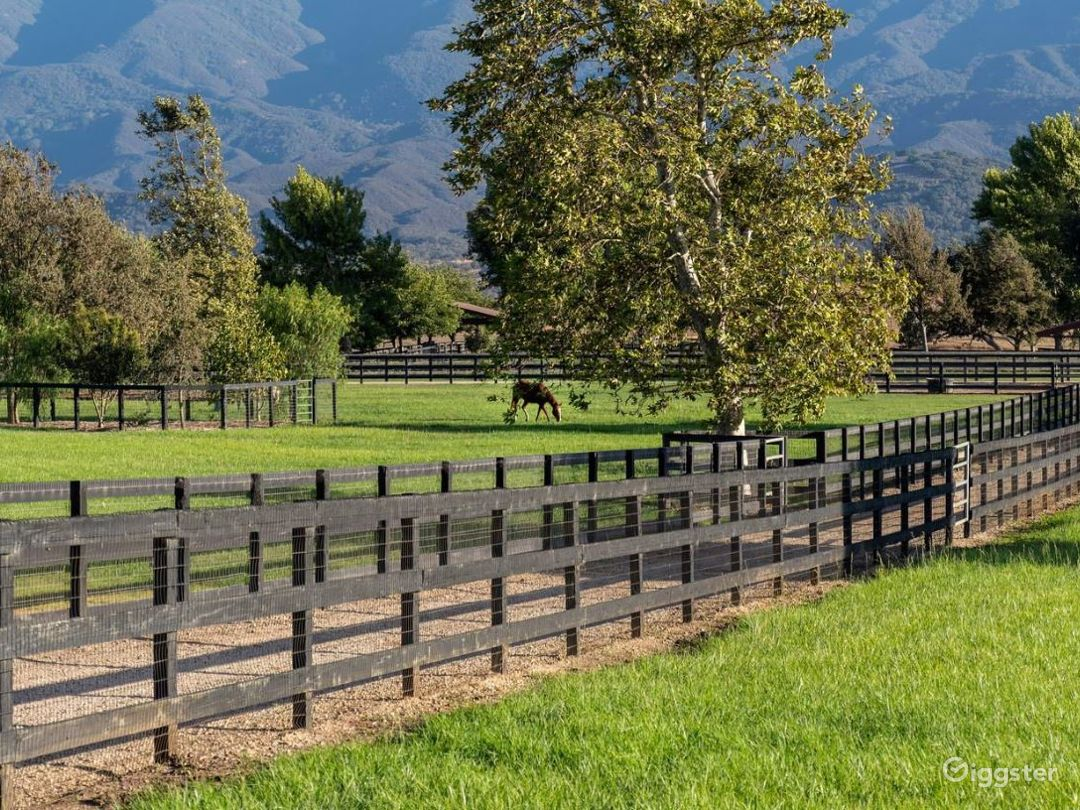 Equestrian Ranch and Beautiful Land Photo 3