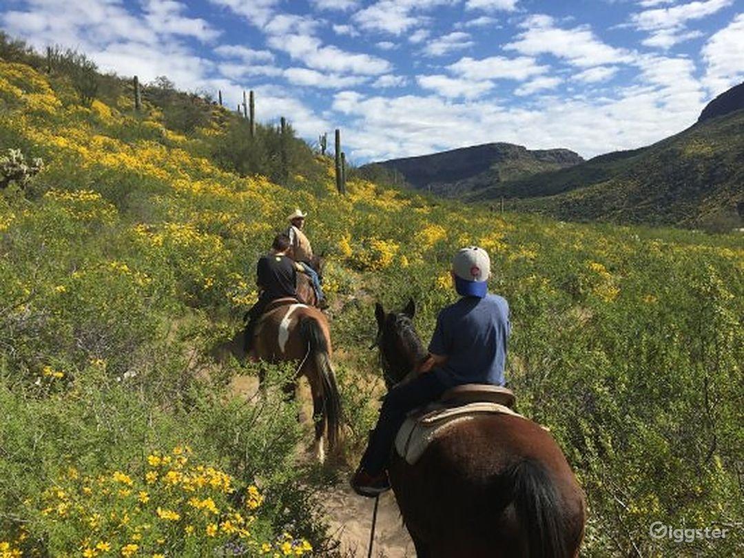 Wild West Horseback Riding Photo 1