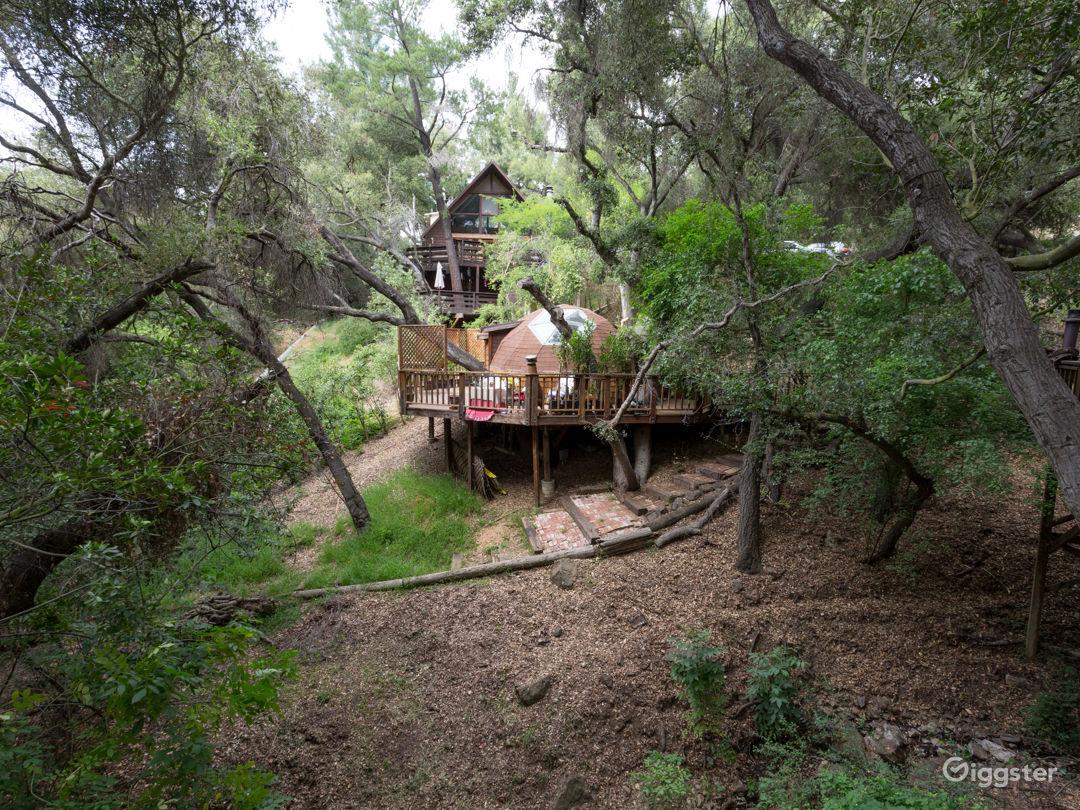 Gorgeous Private European Tree House Retreat Photo 2