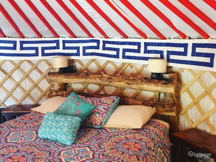 Unique Yurts with Colorful Design Photo 2