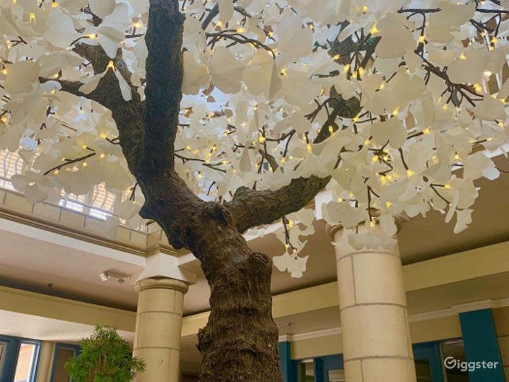 Alluring Lobby Conference Venue Photo 4