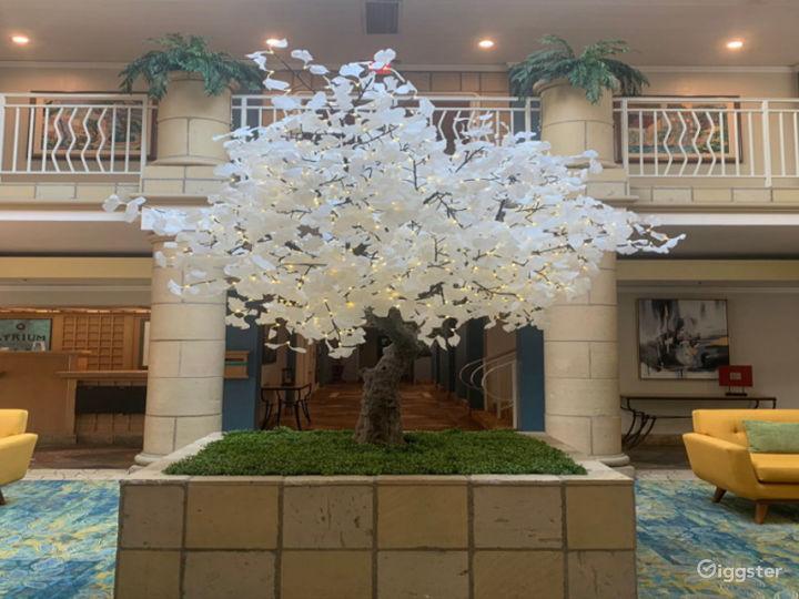 Alluring Lobby Conference Venue Photo 3