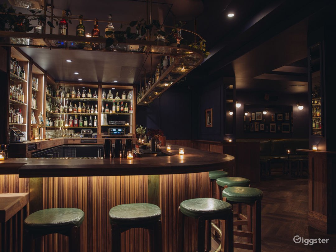 Beautiful Mid-Century (ish) Bar Photo 3