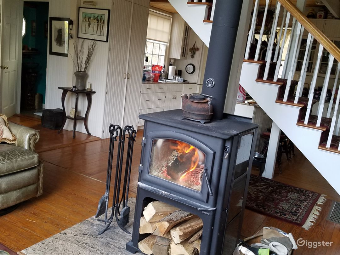 Glass front wood burning stove/fireplace.