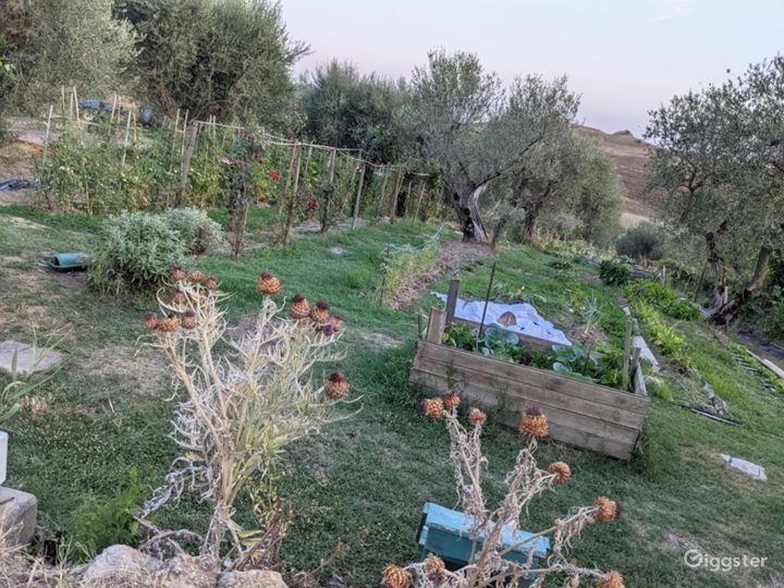 Vegetable farm/garden @  Italy Film Photo Location