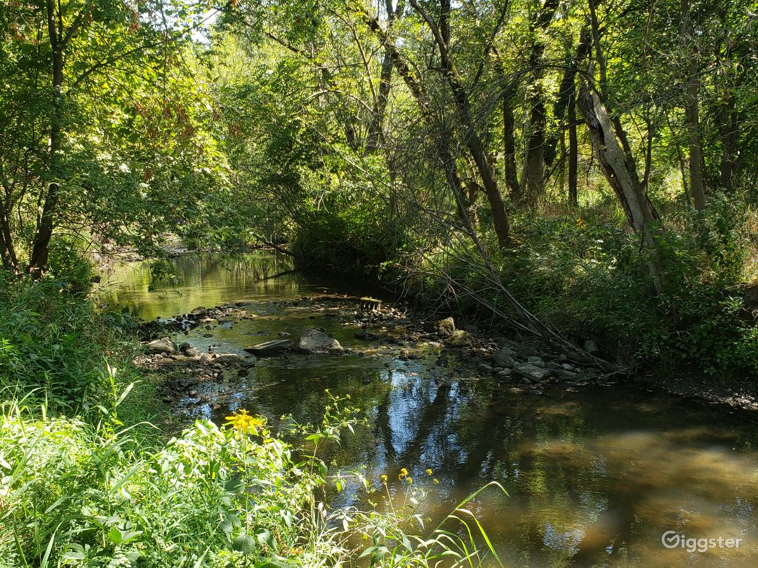 Natural flowing creek