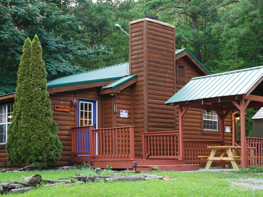 Lovely Secluded Cabin with Large Yard and Hot Tub Photo 1