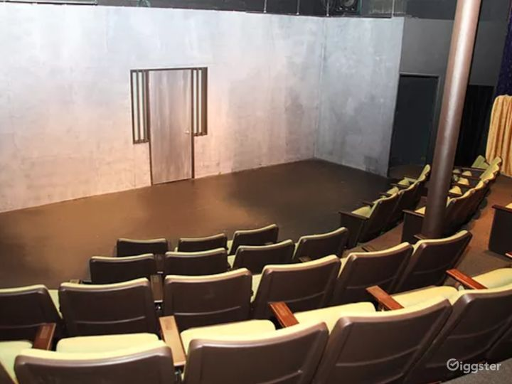 Performing Arts Conservatory Theater and Studio Photo 5