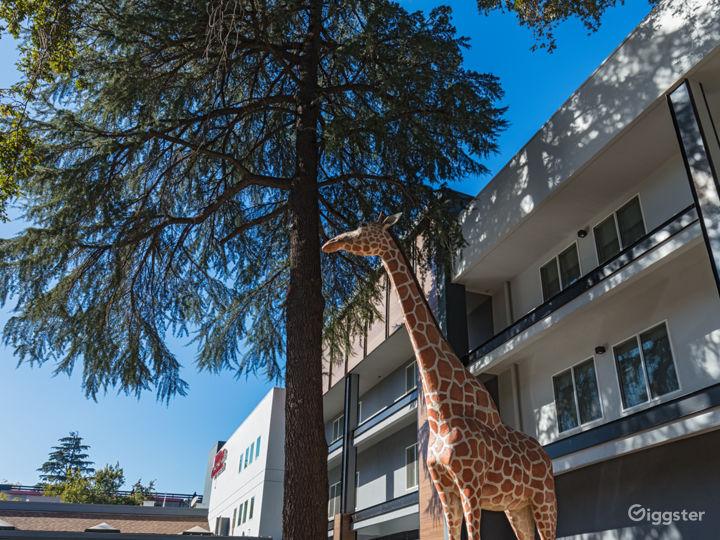 Downtown Hotel, near UC Davis! Photo 4
