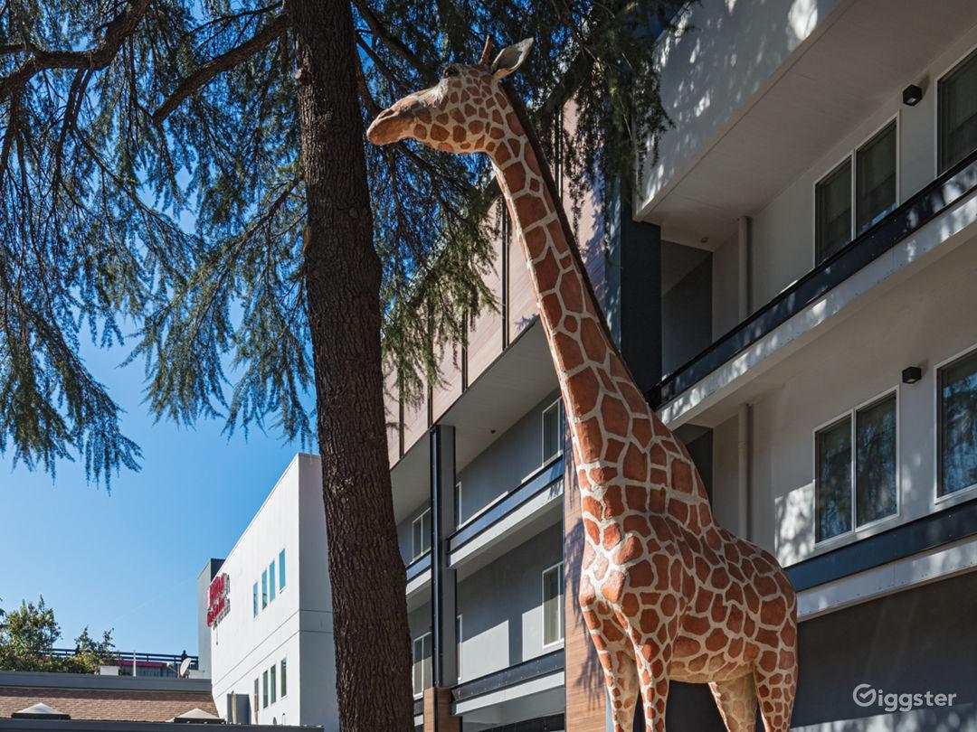 Downtown Hotel, near UC Davis! Photo 1