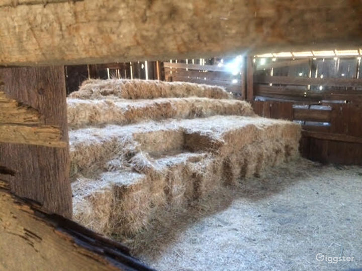 ASA Ranch Photo 4