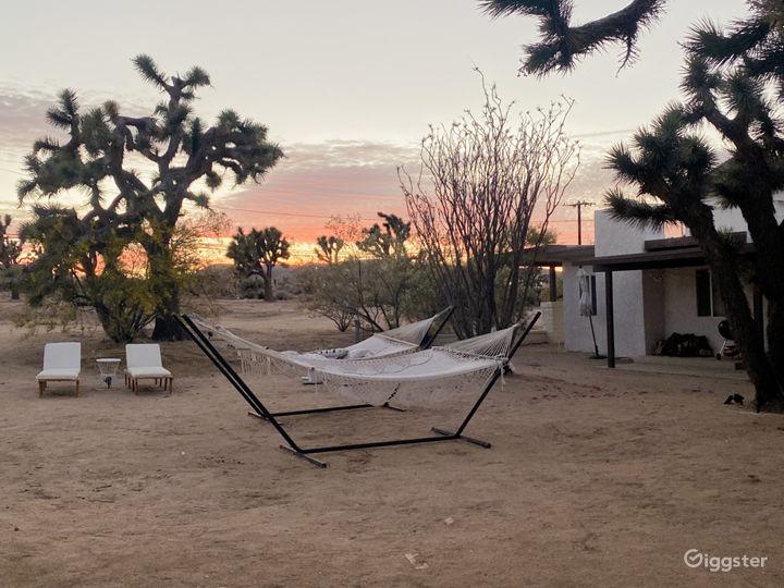 Bright, Modern Desert Home on 5 Acres Photo 2