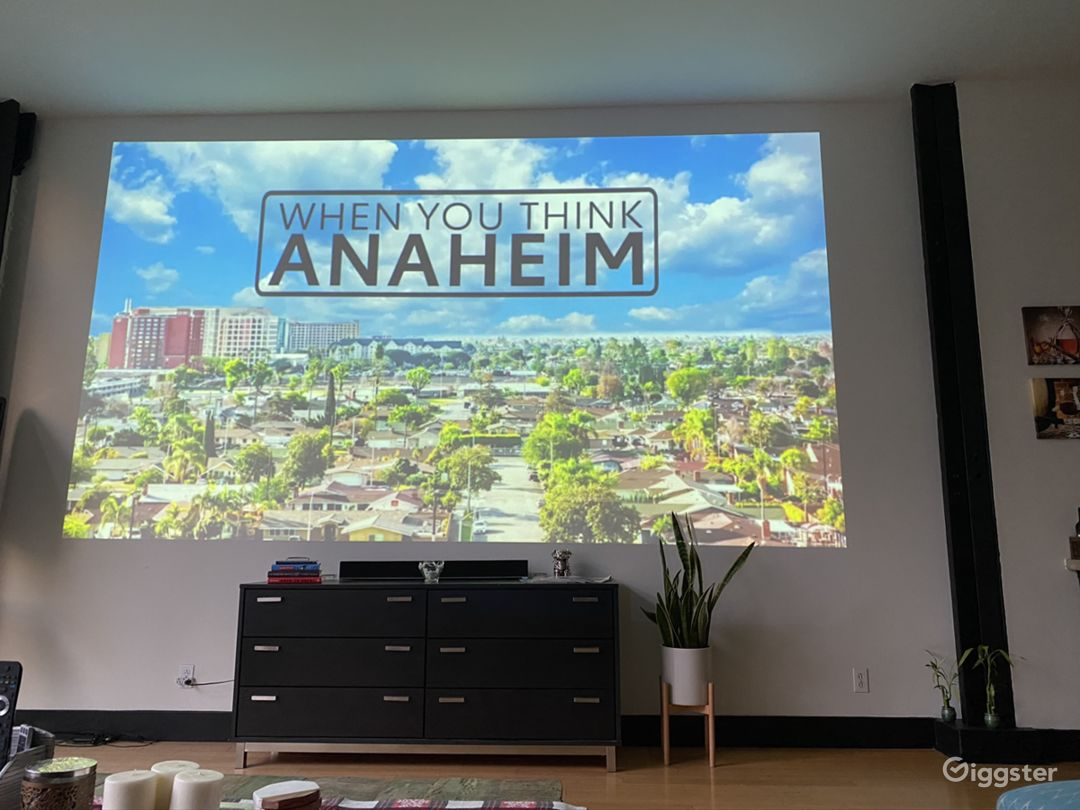 Projector View