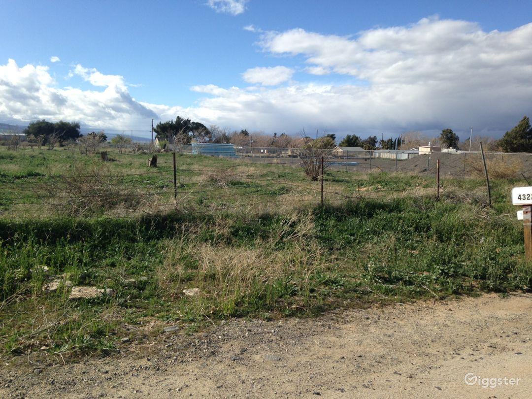 Brush desert area next to pipeyard Photo 4