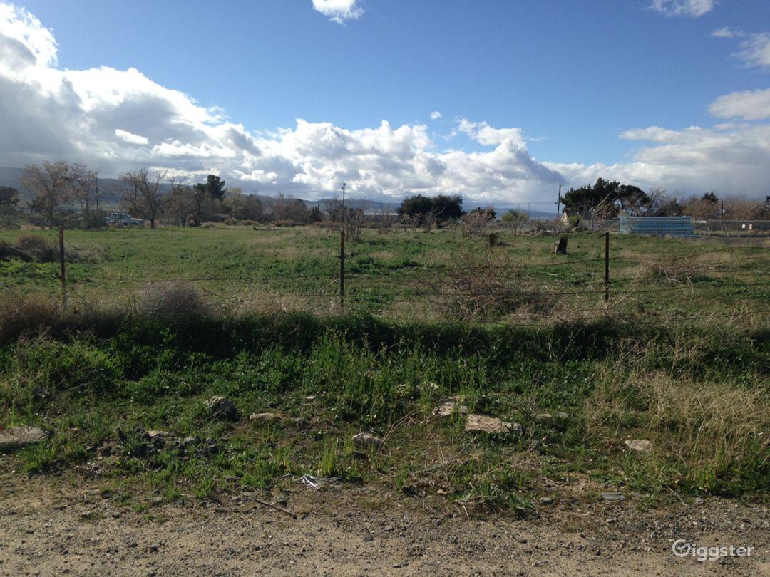 Brush desert area next to pipeyard Photo 3